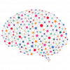 Neural Networks: User Guide for Business