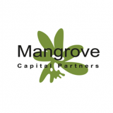 Ukrainian Startup DreamTeam Raised $5 Million From Mangrove Capital Partners in a Seed-round